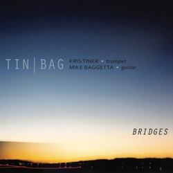 tinbag_bridges