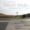 "Fabian Baur - ""Lifestream"""