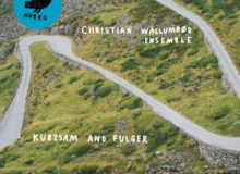 "Christian Wallumrod - ""Kurzsam and Fulger"""