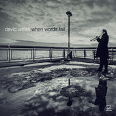 "David Weiss - ""When Words Fail"""