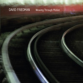 "David Friedman - ""Weaving Through Motion"""
