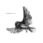 "Grey Wing Trio - ""Amoroso"""