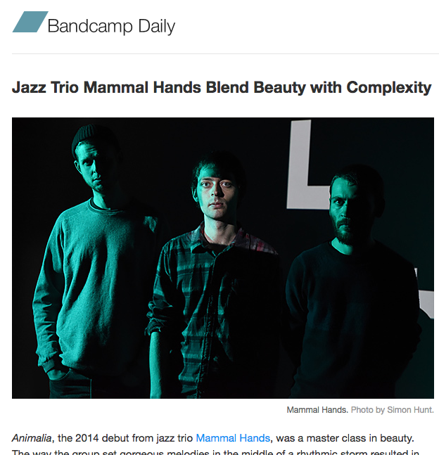 mammal-hands-at-bcd
